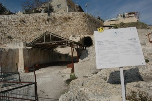 City of David heritage site. (Photo: Allison Deger)
