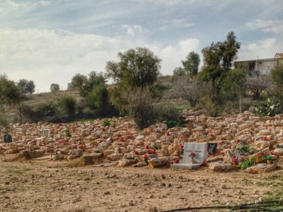Goldog pet cemetery  for deceased Jewish-Israeli owned dogs, and Boxer breeder in the Negev, Israel. (Photo: Callie Maidhof)