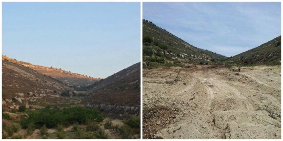 Valkley before and after destruction of trees, from Daoud Nassar