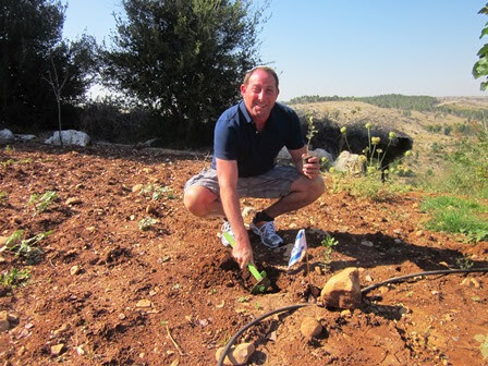Ron Werner plants trees in memory of his dogs Sam, Zach and Lucy. (Photo: JNF)