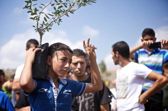 A young activist holds an olive tree in front of soldiers during the first Friday demonstration on September 5th. (Photo: Kelly Lynn)