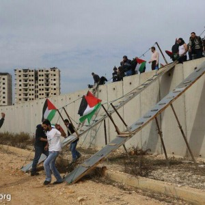 Palestinian activists use a metal ramp to cross the separation wall near the Israeli Qalandiya checkpoint between the West Bank city of Ramallah and Jerusalem, November 14, 2014. The activists were protesting against Israeli authorities allowing settlers to enter the Al-Aqsa mosque compound and Israel imposing restrictions on Muslims wishing to perform Friday prayers at Al Aqsa Mosque. (Photo: Oren Ziv/Activestills)
