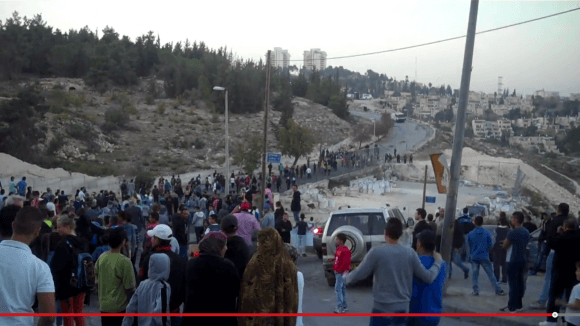 Issawiya, demonstration, November 2014