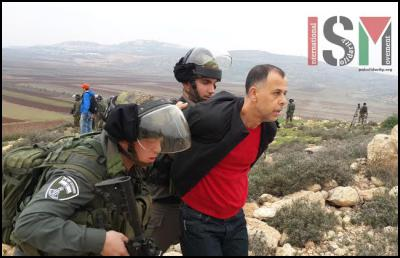 Palestinians continue the struggle against the Adei Ad outpost. December 17th 2014 (photo: International Solidarity Movement)