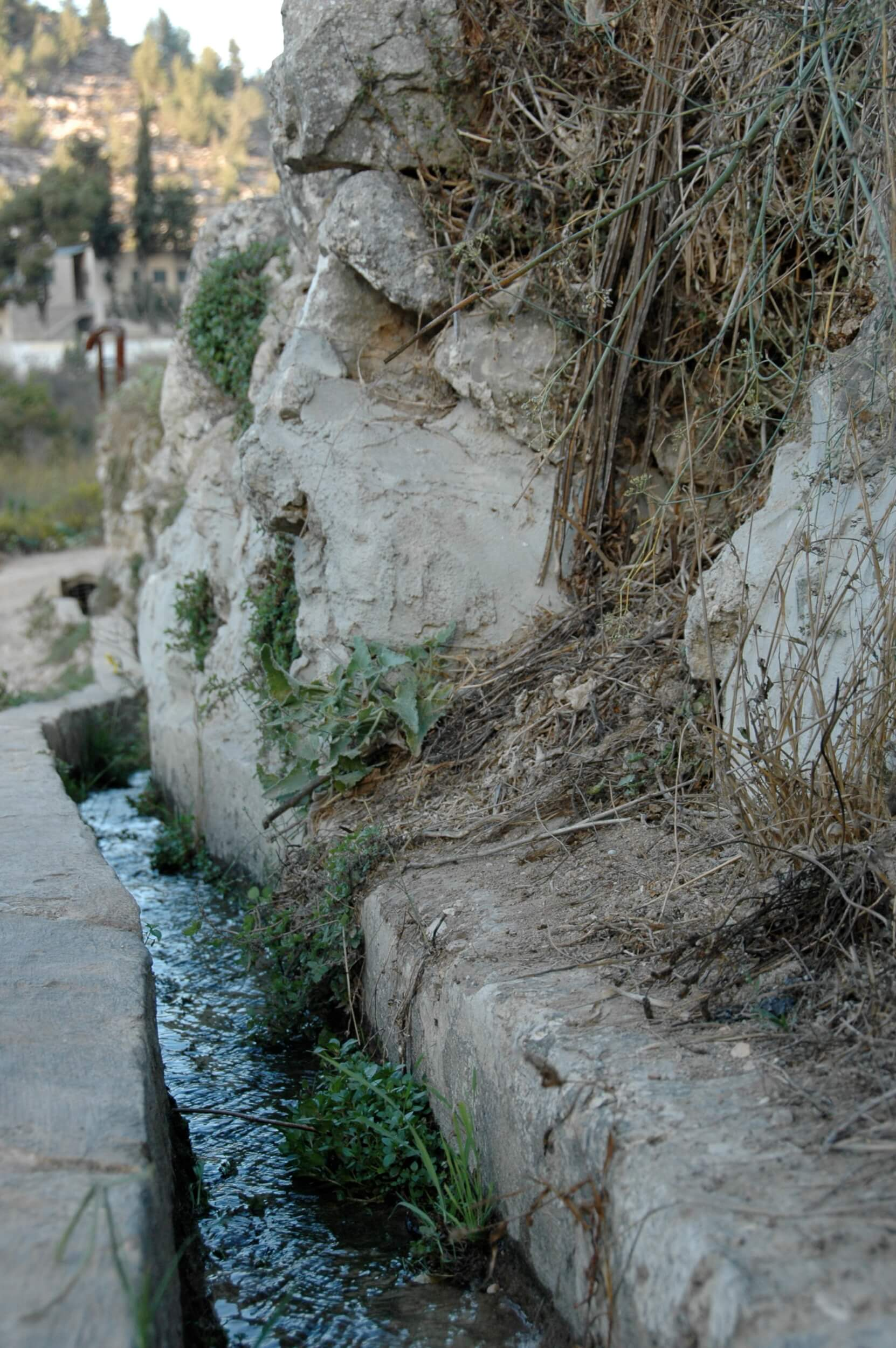 Battir is famous for its ancient irrigation system that dates back to the Roman period. The system would be damaged if a wall were built. (Photo: Sarah Levy)