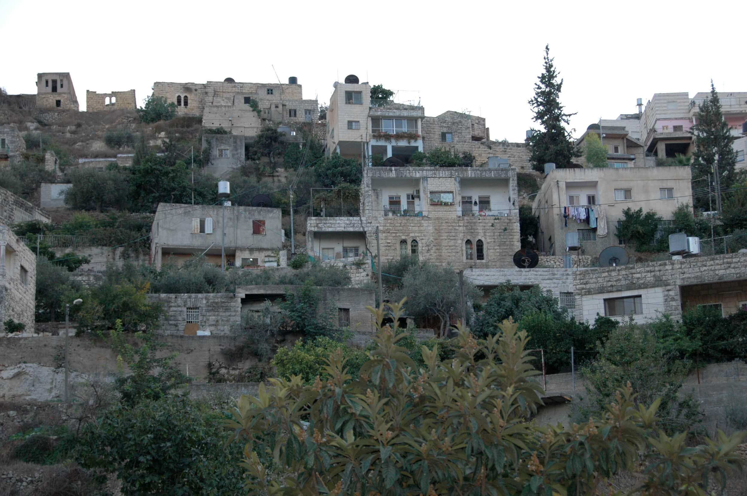 Houses along one side of Battir. Several houses nearby would be destroyed if the wall were built because they stand where Israel wants to build. (Photo: Sarah Levy)