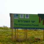 Ambassadors Forest, paid for by the Jewish National Fund