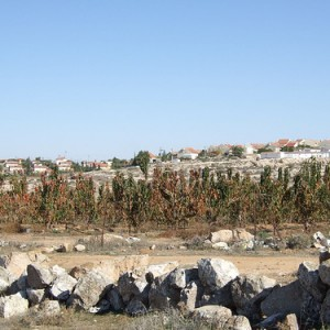 Ma'on settlement, in the Hebron Hills