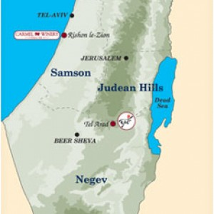 Carmel wines from occupied territories