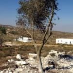 Adei Ad outpost, photo by Nir Kafri