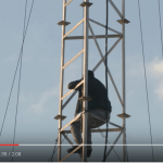 Screenshot: Abu Setta contemplating suicide. Watania Media Agency - Gaza