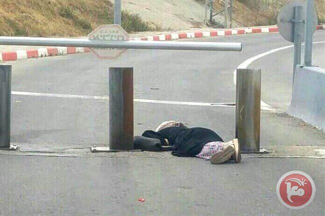 Israeli forces kill teenage Palestinian girl at checkpoint