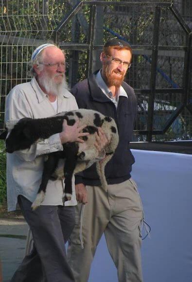Yehuda Glick walks with militant Jewish Undeground member and senior Temple Movement figure Yehuda Etzion Photo: Mynet