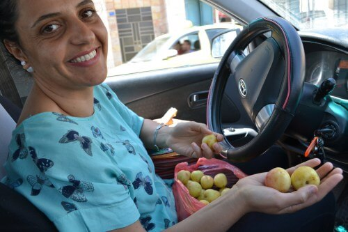 Vivien Sansour with apricots, photo by David Kattenburg