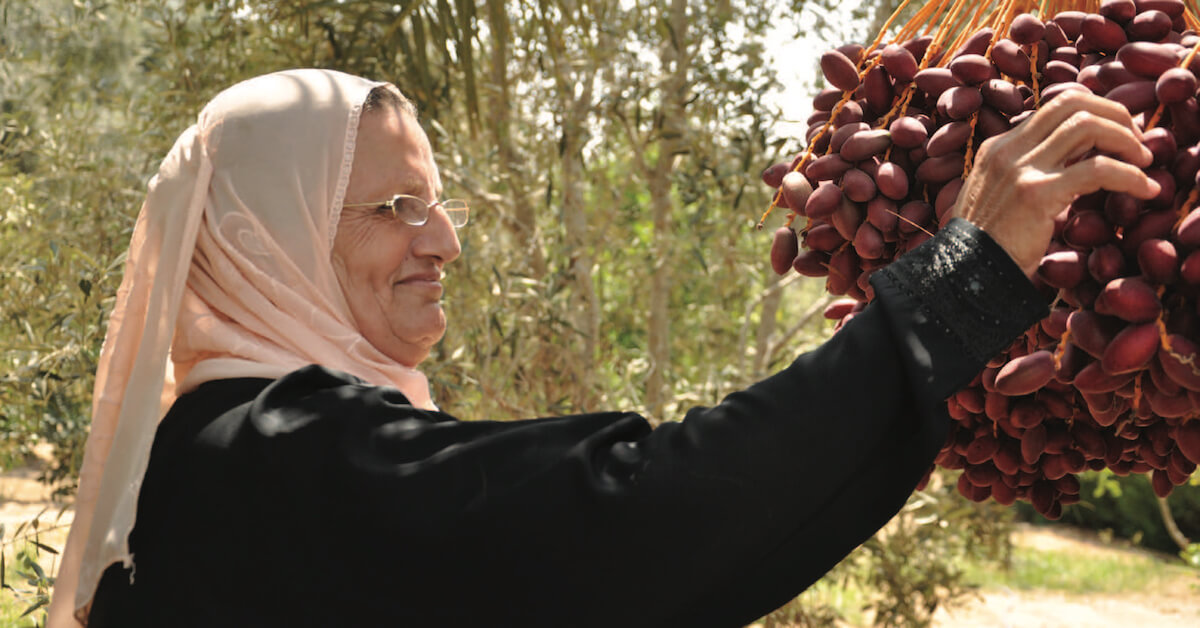 Na'ema Al-Daghma - The Gaza Kitchen 2nd Edition (Photo: Just World Books)