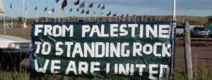 palestine-to-standing-rock22-banner-photo-cred-haitham