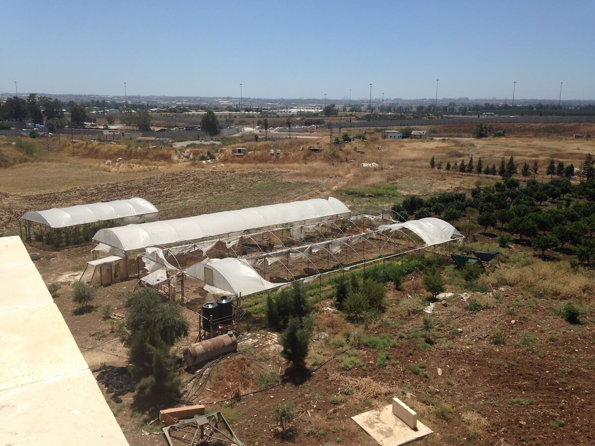 Experimental greenhouses at Palestine Technical University-Kedoorie, destroyed by Israeli troops in the same December 2015 incursion. The separation wall, which cuts through university land, is visible in the background.