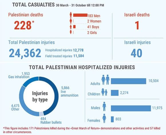 *This figure includes 171 Palestinians killed during the Great March of Return demonstrations and other activities and 57 killed in other circumstances.
