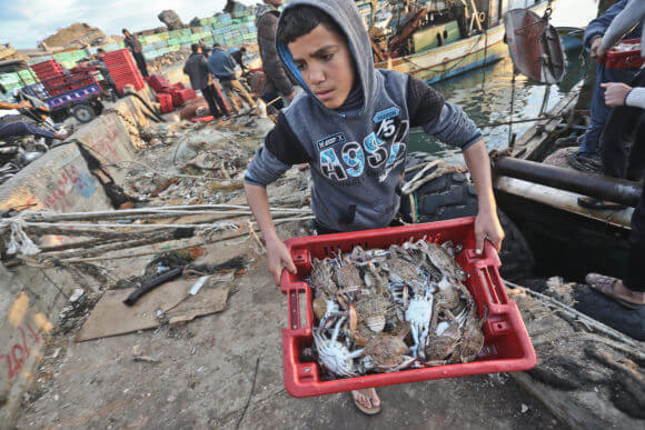 Gaza fish market. (Photo: Mohammed Asad)