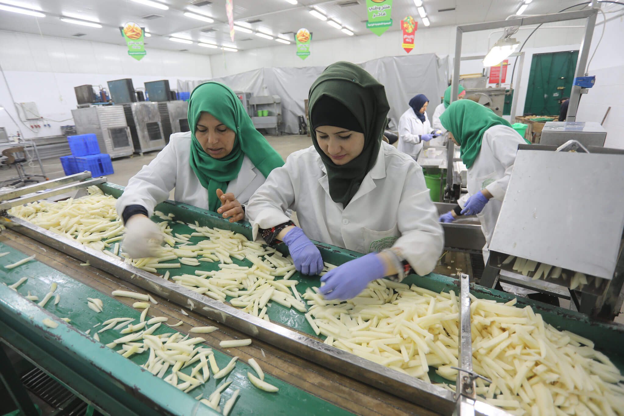 Palestinian woman weighs french fries at the Rosetta factory in northern Gaza