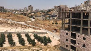 The Wadi al-Hummus area of Sur Bahir, East Jerusalem (Photo: Saleh Zghari)