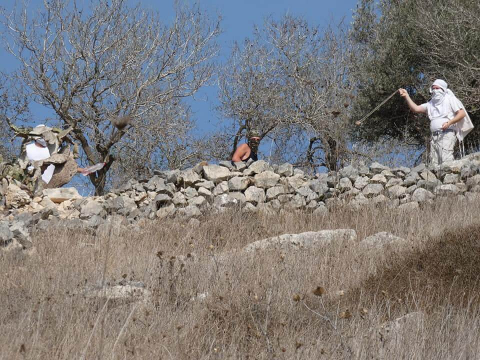 Israeli settlers attack farmers in the Nablus area village of Burin, October 2019 (Photo: Facebook)