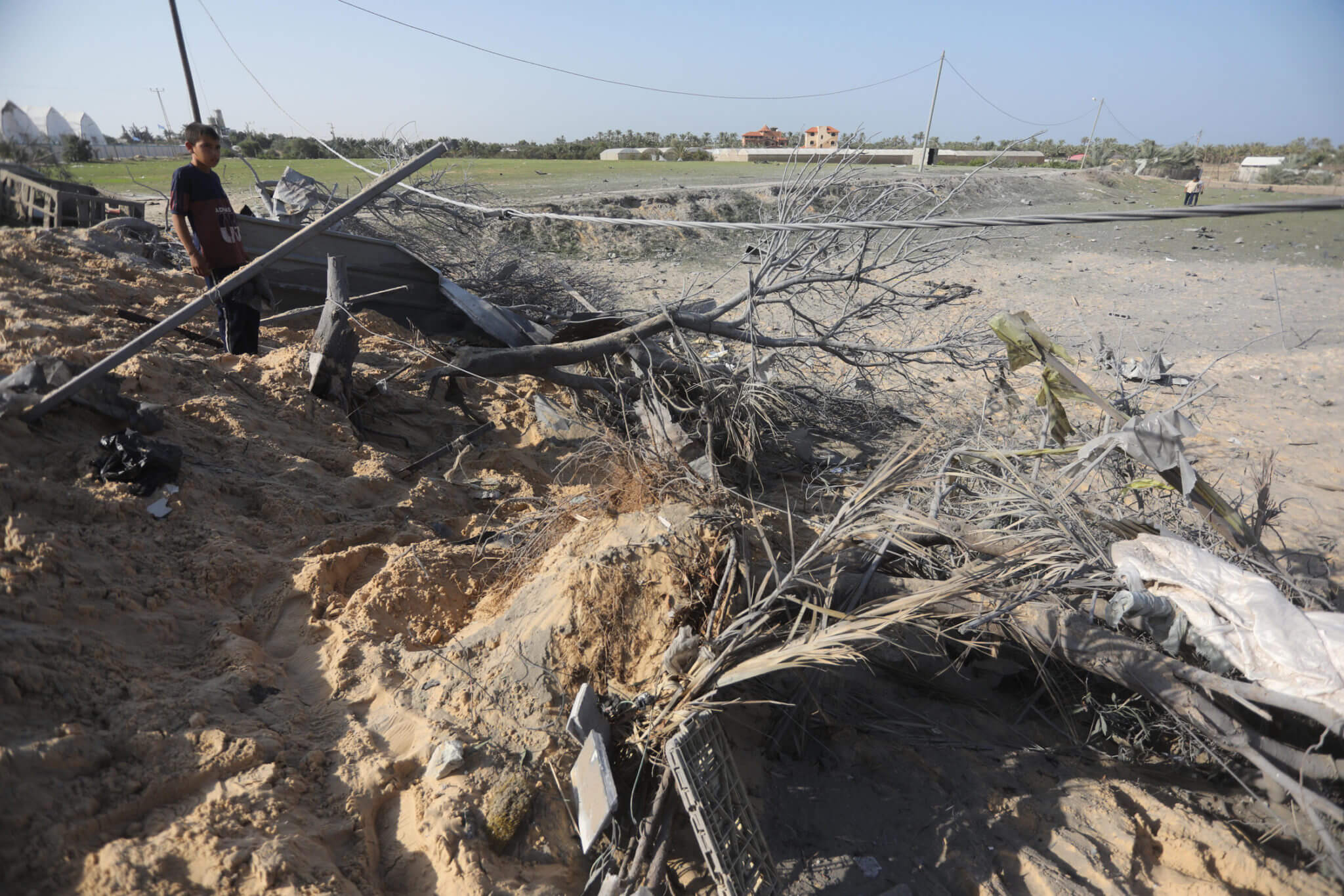 Trees in agricultural areas were uprooted throughout the Gaza Strip as a result of the shelling
