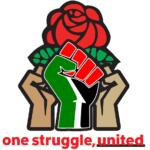 DSA Palestine Solidarity Working Group logo