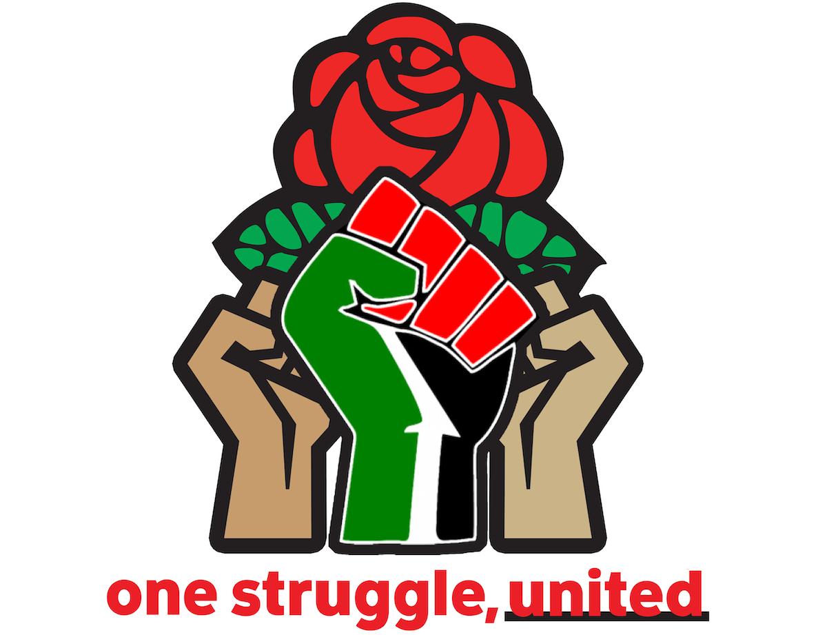 DSA Palestine Solidarity Working Group logo
