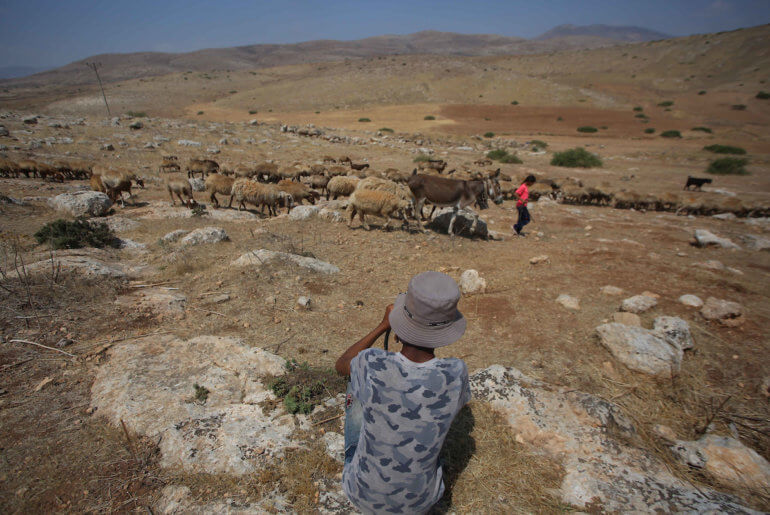 Mohammed Kaabneh,15, grazes sheep near his family's tents in Khirbet Samra in the northern Jordan Valley, on June 30, 2020. His family's lands are threatened with confiscation as part of Israel's annexation of parts of the occupied West Bank. (Photo: Shadi Jarar'ah/APA Images)