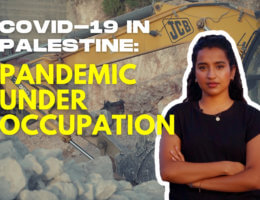 COVID-19 in Palestine: Pandemic under occupation